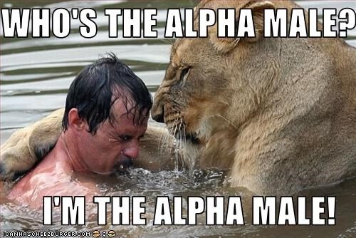 am i too alpha
